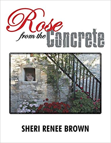 Rose from the Concrete